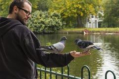 Mężczyzna Żywieniowi gołębie Niskim jeziorem obrazy stock