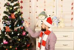 Mężczyzna z brodą dekoruje choinki Festiwale i dekoracja zdjęcie stock