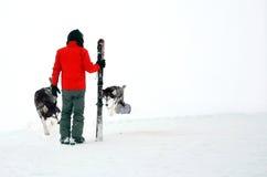 Mężczyzna z husky Fotografia Stock