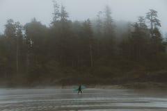 Mężczyzna z kipieli odprowadzeniem na plaży z lasem behind w mgle obrazy royalty free