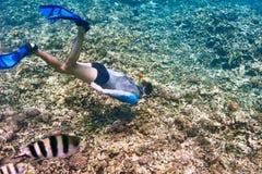 Mężczyzna z maskowy snorkeling Zdjęcie Royalty Free