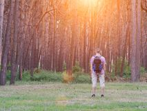 Mężczyzna z plecak pozycją przed lasowym, tylni widokiem, ujawnienia zawodnik bez szans zmierzchu czas Zdjęcie Stock