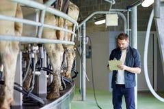 Mężczyzna z schowka i doju krowami na nabiału gospodarstwie rolnym Zdjęcia Stock