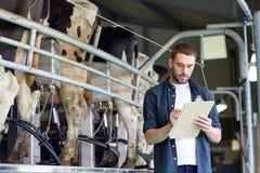 Mężczyzna z schowka i doju krowami na nabiału gospodarstwie rolnym Obrazy Stock
