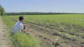 Mężczyzna z smartphone na krawędzi pola zbiory wideo