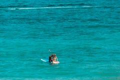 Mężczyzny i kobiety obsiadanie w paddle desce otaczającej wodą przy t zdjęcie royalty free