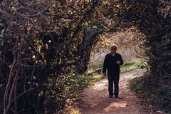 Mężczyzny odprowadzenie na droga przemian Otaczającym z Zielonymi drzewami i Bushe zdjęcia stock