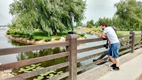 Mężczyzny stojaki na moście i spojrzenia przy widokiem: staw, wodne leluje, wyspa z wierzbą, starannie naszywany gazon zdjęcie royalty free