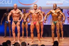 Męscy bodybuilders napinają ich mięśnie i pokazują ich budowę ciała Zdjęcie Royalty Free