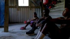 Męscy boksery ćwiczy w sprawności fizycznej studiu zdjęcie wideo