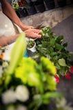 Męscy kwiaciarnia arymażu trzony kwiaty przy kwiatu sklepem Fotografia Stock
