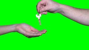 Męscy ręka chwyta mieszkania klucze i dają żeńska osoba odizolowywająca na zieleni zbiory