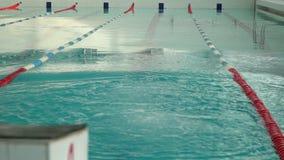 Męska atleta pływa w basenie zbiory