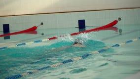 Męska atleta pływa w basenie zdjęcie wideo