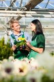 Męska i żeńska kwiaciarnia lub ogrodniczka w kwiat pepinierze lub sklepie Obrazy Stock