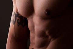 męska mięśniowa półpostać Obraz Royalty Free