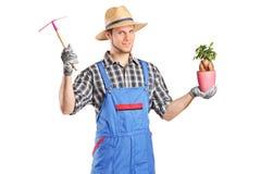 Męska ogrodniczka trzyma rośliny Obraz Stock
