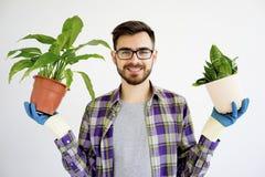 Męska ogrodniczka z roślinami Zdjęcie Royalty Free
