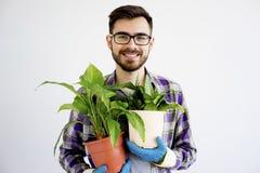 Męska ogrodniczka z roślinami Fotografia Stock