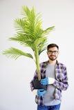 Męska ogrodniczka z roślinami Obrazy Royalty Free