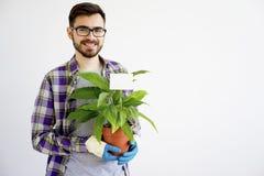 Męska ogrodniczka z roślinami Obrazy Stock