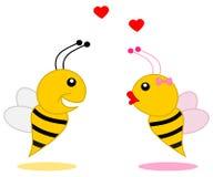Męska pszczoła który zakłada jego partnera royalty ilustracja