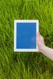 Męska ręka trzyma cyfrową pastylkę na trawy polu Concep fotografia Obrazy Royalty Free
