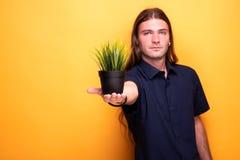 Męska seans roślina w garnku w ostrości zdjęcia stock