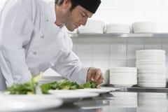 Męska szefa kuchni narządzania sałatka W kuchni Obraz Royalty Free