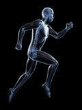 Męski biegacz ilustracji