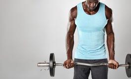 Męski bodybuilder ćwiczy z barbell Obraz Stock