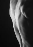 Męski bodybuilder zdjęcie royalty free