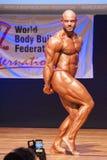 Męski bodybuilder napina jego mięśnie pokazywać jego budowę ciała Obraz Stock