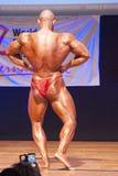 Męski bodybuilder napina jego mięśnie pokazywać jego budowę ciała Zdjęcia Stock