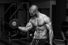 Męski Bodybuilder Robi Wagi Ciężkiej ćwiczeniu Dla bicepsów Zdjęcie Stock