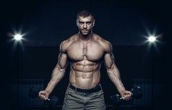 Męski bodybuilder, sprawność fizyczna model Zdjęcie Stock