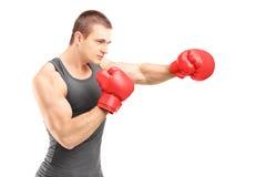 Męski bokser uderza pięścią z czerwonymi bokserskimi rękawiczkami Zdjęcia Stock