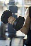 Męski gym sprawności fizycznej trening Fotografia Royalty Free