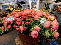 Męski kwiaciarnia sklep sprzedaje różnorodne peonie kwitnie z klientami Fotografia Stock