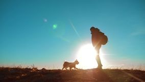 Męski mężczyzna warty mnie turystycznego z psów stojakami na górze góry Mężczyzna sylwetka przy zmierzchem wycieczkowicz przygoda zdjęcie wideo