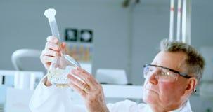 Męski naukowa doświadczalnictwo w laboratorium 4k zbiory wideo