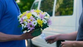Męski płaci kurier dla kwiat dostawy, rocznica teraźniejsza, urodzinowy prezent zdjęcie wideo