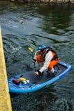 Męski Paddle intern, pies Iść Pod Roanoke rzeki mostem i Obraz Stock