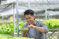 Męski rolnik w zielonego domu gospodarstwie rolnym zdjęcia stock