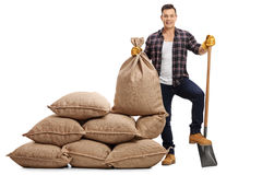 Męski rolnik z łopatą pod jego stopą obok stosu burlap sa Obrazy Royalty Free