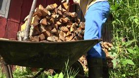 Męskie ogrodniczek ręki z rękawiczkami rozładowywają siekającą drewnianą łupkę od fury 4K zdjęcie wideo