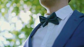 Męskie ręki korygują ślubnego bowtie na białej koszula w zielone światło lesie 4K zdjęcie wideo