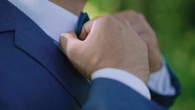 Męskie ręki korygują ślubnego bowtie, zamykają w górę 4K zdjęcie wideo