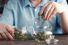 Męskie ręki Stawiają ziołowej herbaty w czajniku Obraz Stock
