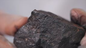 Męskie ręki w rękawiczkach trzyma węgiel Naukowiec z próbką węgiel Czarny węgiel w górnika ` s ręce Obrazy Stock